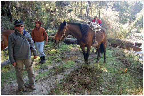 Riding on horseback in Alto Palena
