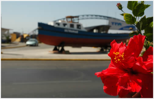 City tour por Arica