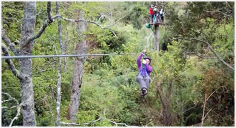Zip-lining in at Chollinco Estate - Futrono