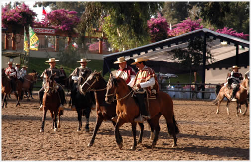 Estadio Medialuna Rodeo Rancagua